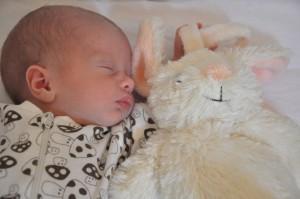Elliot och Kaninen 20/11 2012